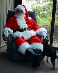 santa claus and dog picture